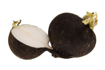 Bio Rettich schwarz ca. 500g