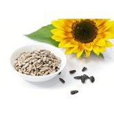 Bio-Sonnenblumenkerne-(250g)-vegan